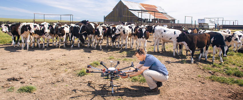 UC Merced Extension - Student works with drone in agricultural setting.